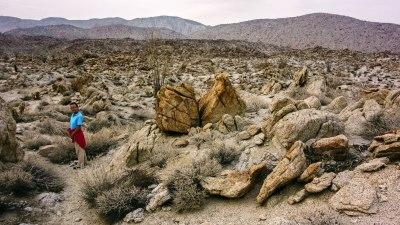Die lange Dürre hat auch hier ihres Spuren hinterlassen. Alles ist knochentrocken bis abgestorben