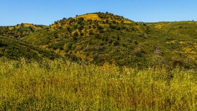 Hügellandschaft bei Cochope