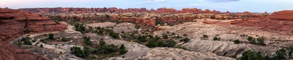 Wieder 'meine Nadeln' , Canyonlands NP, Utah