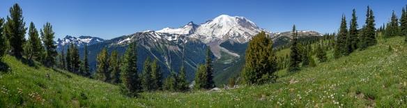 Mount Rainier von der Sunrise Seite aus gesehen