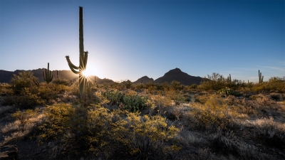 Gilbert Ray CG, Saguaro West NP