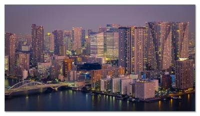 Aussicht vom 53. Stock auf Tokyo