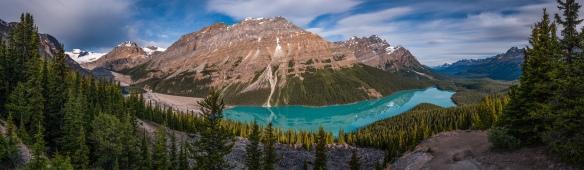 Peyto Lake, Banff NP, Alberta