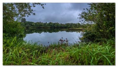 Lake Quigg, Montesano, WA