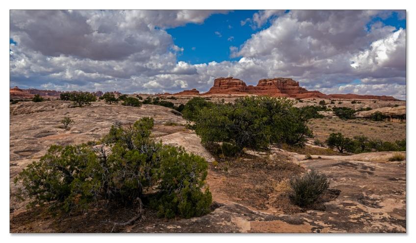 Needles, Canyonlands NP, Utah